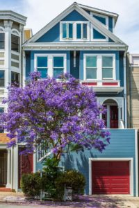 Blue house with a violet tree in front of it. Buy a house in California.