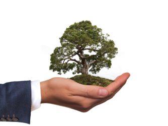 Eco-friendly Storage Solutions