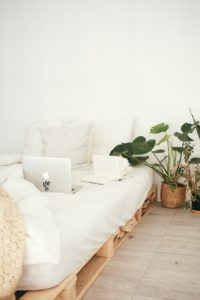 There is a bed, a laptop and some cushions on it. And there is a plant next to the bed, one of the Colorado vs. Florida home decor trends that is very popular.
