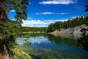 Hayden landscape