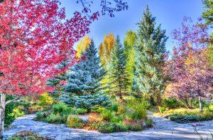 A park scenery in Colorado.